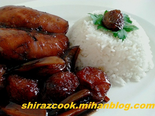 Shiraz Cook